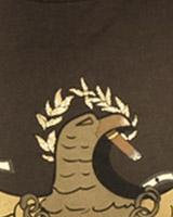 CASSIDA shirt print